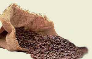 balení zrnkové kávy