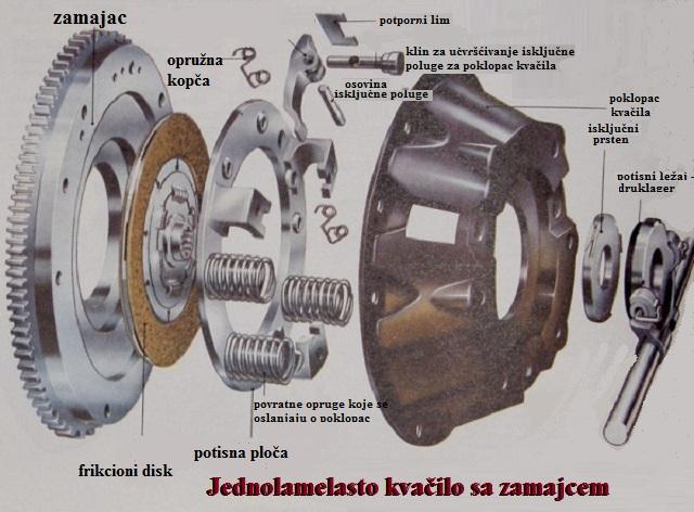 lamelasto kvacilo