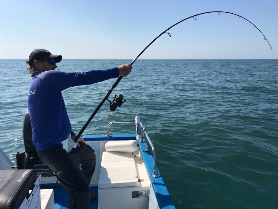 Canne Penn Conflict Tuna
