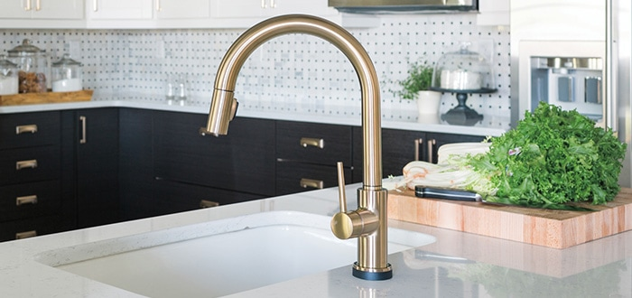 trask kitchen collection delta faucet