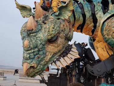 dragon (3)