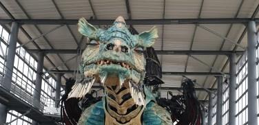 dragon-calais