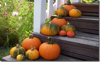 pumpkins_porch