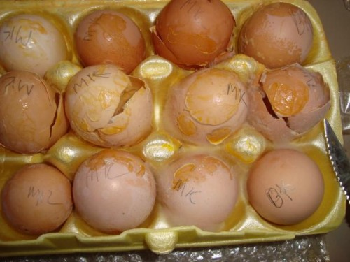 smashed eggs