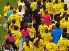 Ici, pas un, mais près de 9000 maillots jaunes dans le peloton !