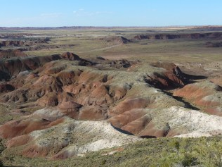 Painted Desert Arizona (16)
