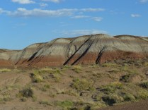 Painted Desert Arizona (26)