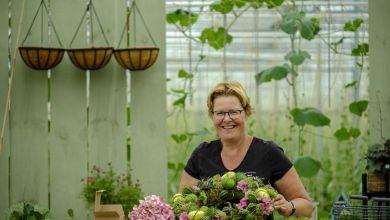 Photo of Open weekend bij Kwekerij Bloeiers!