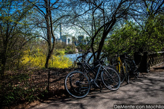 Bicicletas atadas al alambrado en el Central Park, Nueva York.