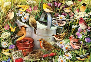 Hidden Hideaway Birds Jigsaw at www.dementiaworkshop.co.uk