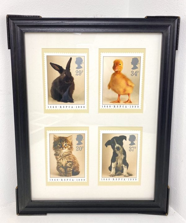 Pets Collage Wall Art