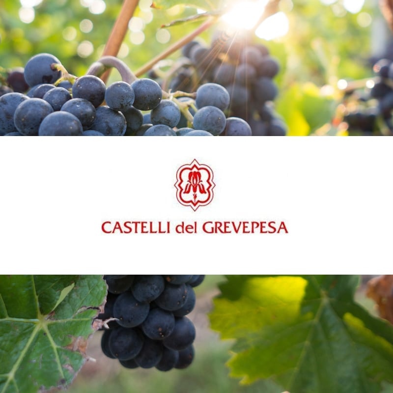 Wines Castelli del Grevepesa