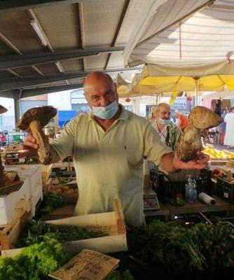 Demetra Hostaria Market Tour Porcini Mushrooms