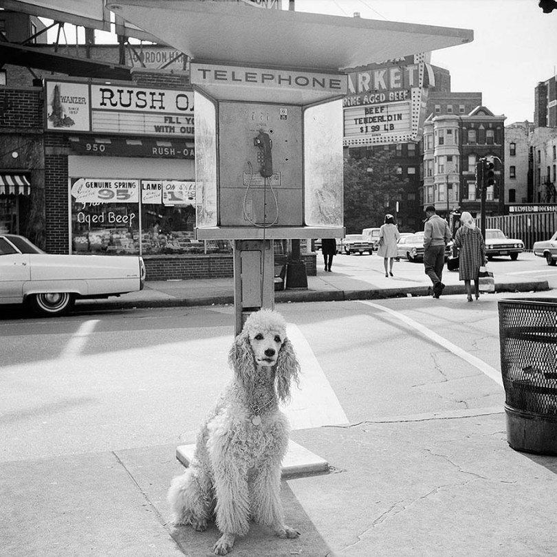 nova-iorque-chicago-rua-fotografia-vivian-maier-12
