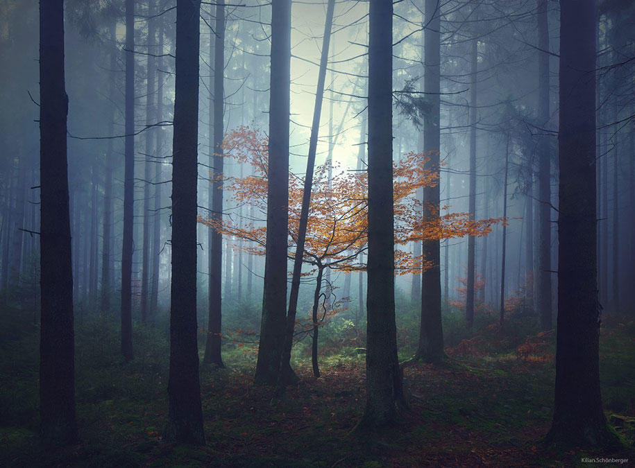 brothers-grimm-wanderings-landscape-photography-kilian-schonberger-3