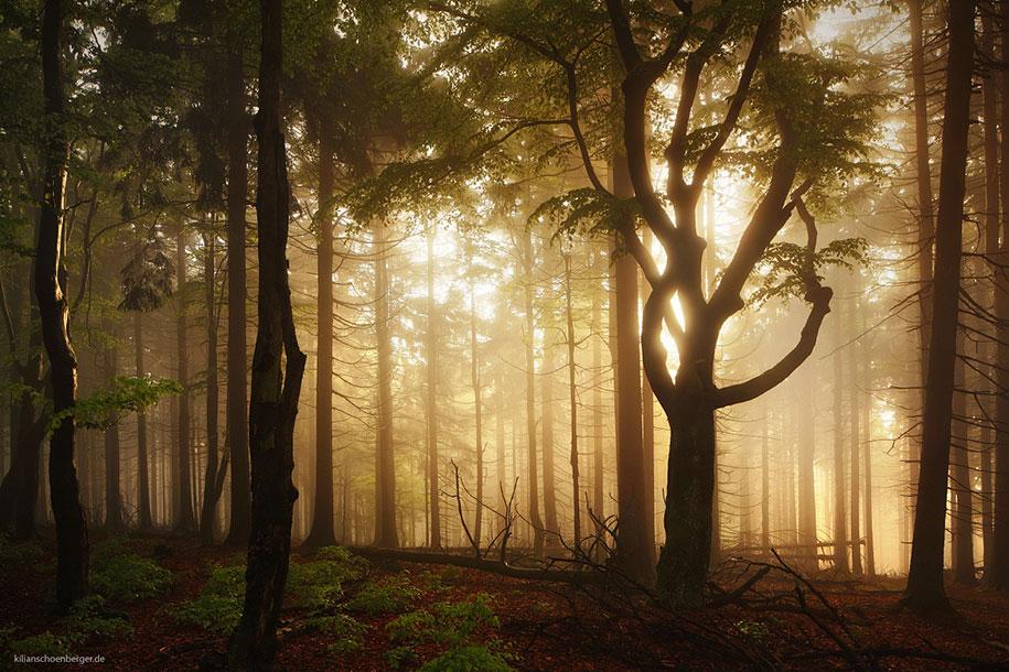 brothers-grimm-wanderings-landscape-photography-kilian-schonberger-4
