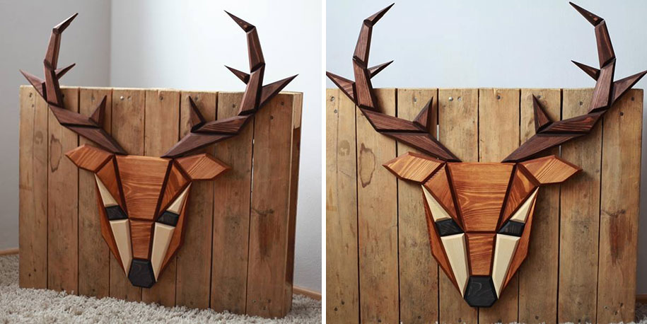 Artist Makes Wooden Animal Head Trophies Instead Of Killing