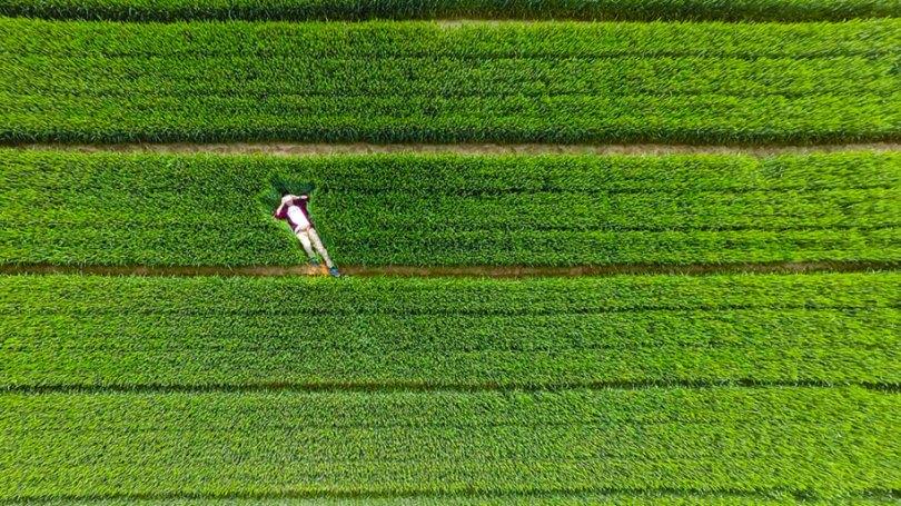 melhor-drone-fotos-2015-dronestagram-1