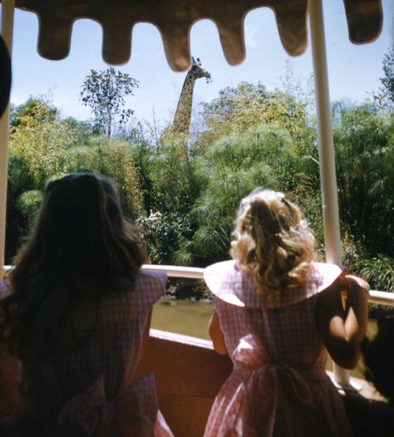 disneyland opening day 1955 17 - Dia de abertura da Disneylândia em 1955