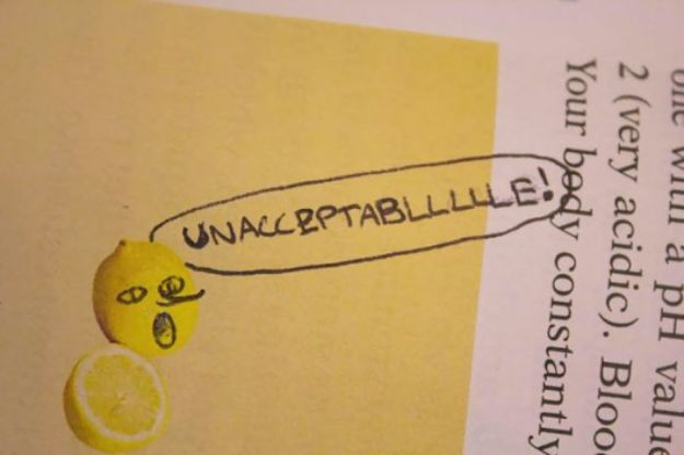 599c347ea2c66-funny-textbook-drawings-221-599ad36711939__700 10+ Examples Of Brilliant Textbook Vandalism When Bored Students Couldn't Stop Their Creativity Random