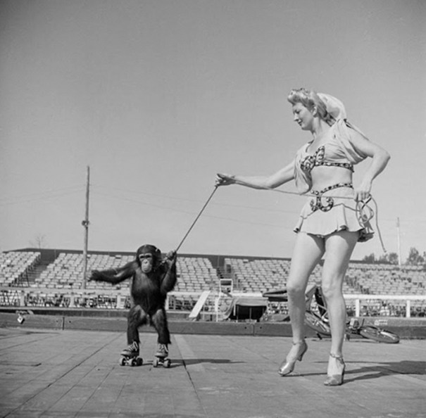59ad111ba8774 vintage photographs new york street life stanley kubrick 18 59a9551395e10  700 - Fotos de Stanley Kubrick com 17 anos revela que ele sempre foi um gênio