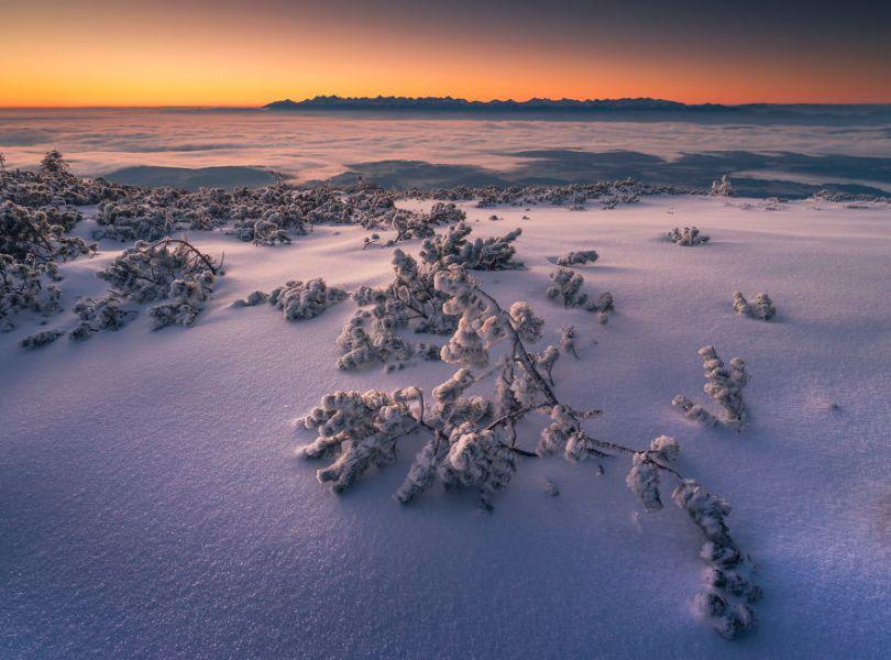 5a2e38432fe2d DSF1563aTIFF 5a15966061443  880 - Inverno no Leste Europeu: Fotógrafo captura a deslumbrante beleza da Polônia