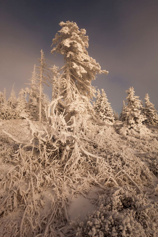 5a2e384472ddd Slakny Stol 03 01 2016 1 5a1596b776589  880 - Inverno no Leste Europeu: Fotógrafo captura a deslumbrante beleza da Polônia