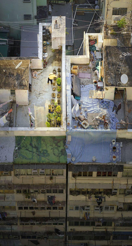 5ae2eb09dcb1e Bonsai Master 5adef8e0c88af  700 - 12 coisas interessantes este fotógrafo capturado nos telhados de Hong Kong