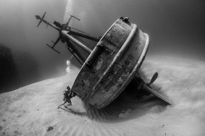 photography winners underwater photographer of the year contest 2018 14 - Vencedores do concurso de fotografia subaquática de 2018