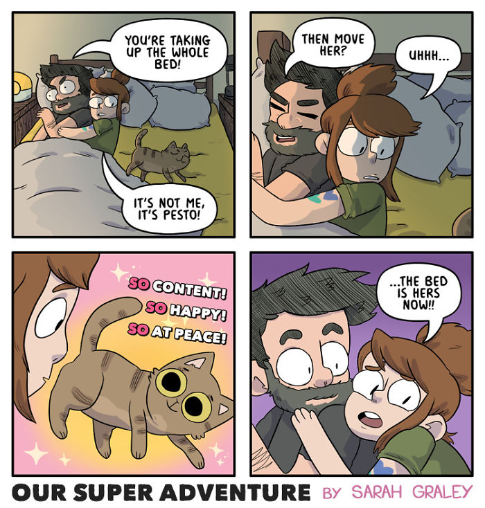5b6d3bbdc0211-relationship-comics-boyfriend-cats-sarah-graley-illustration-5-5b6ae2bbe80b2-png__700 Artist Creates Hilarious Comics Illustrating Her Daily Adventures With Her Fiancé And Her Four Cats Random