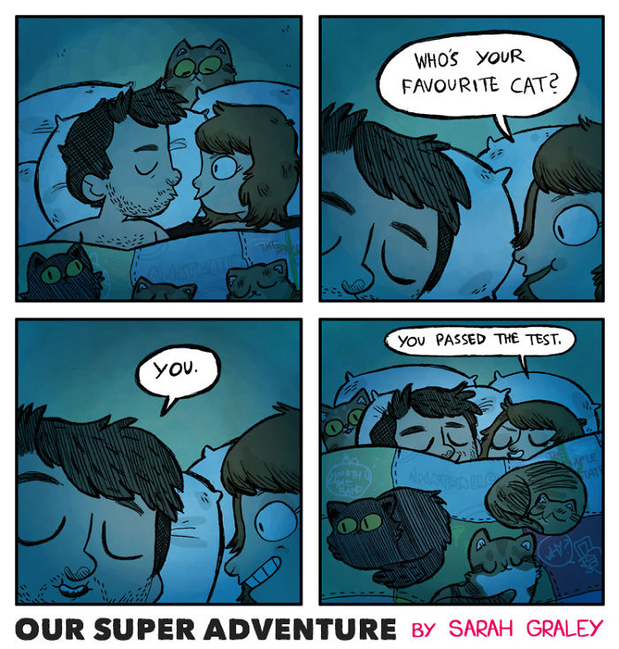 5b6d3bbe239ac-relationship-comics-boyfriend-cats-sarah-graley-illustration-19-5b6ae2dc5a515-png__700 Artist Creates Hilarious Comics Illustrating Her Daily Adventures With Her Fiancé And Her Four Cats Random