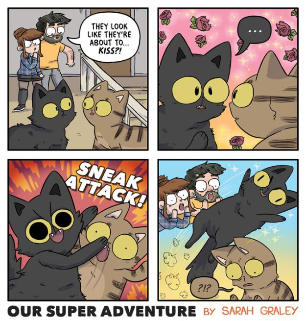 5b6d3bbe50882-relationship-comics-boyfriend-cats-sarah-graley-illustration-24-5b6ae2e8c1704-png__700 Artist Creates Hilarious Comics Illustrating Her Daily Adventures With Her Fiancé And Her Four Cats Random