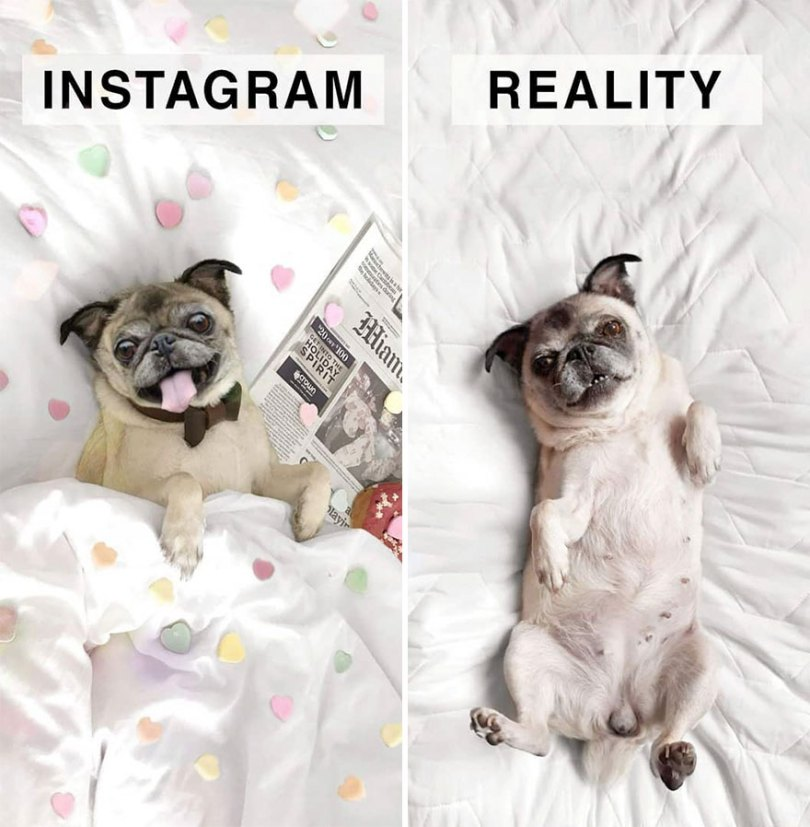 5b976d99c7766 German shows the reality of perfect instagram photos and the result is a lot of fun 5b8e340721d5f 880 - Instagram: Expectativa x Realidade