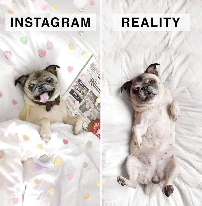 Instagram: Expectativa x Realidade