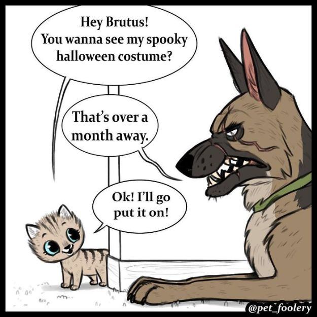 5bbb6f8e30845-funny-animal-comics-adventures-dogs-pixie-brutus-pet-foolery-6-5bb2047a28d4d__700 Adorable Comics About An Old Military Dog And A Little Kitten That Will Warm Your Heart Random