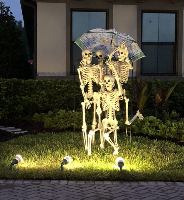 5bd85509bff73-neighbors-house-halloween-decorations-skeletons-sami-campagnano-5bd300ab615ed-png__700 This Girl's Neighbors Won Halloween By Creating New Skeleton Scenarios Every Day Random