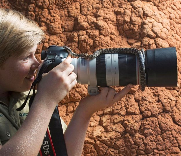 5bee8d632f8b8-wildlife-photography-robert-irwin-photo4a Steve Irwin's 14-Year-Old Son Is An Award-Winning Photographer And Here Are 40+ Of His Stunning Wildlife Photos Photography Random