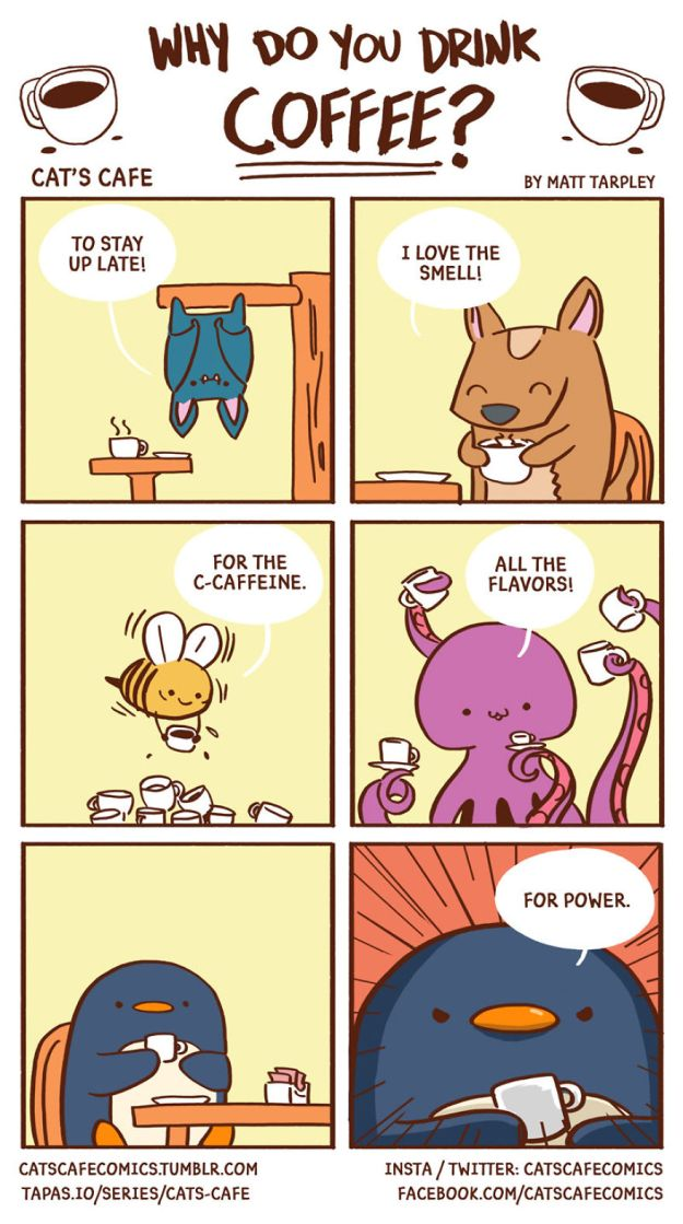 5bf6705caa224-episode_31-5bf2636fd6d7f__880 47 Wholesome 'Cat's Cafe' Comics That Will Brighten Your Day Random