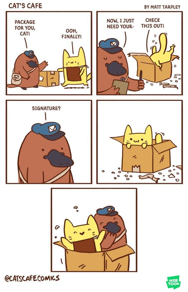 5bf6705cd27f0-A-Cats-Caf-for-Everyone-5bf3de6612ec9__880 47 Wholesome 'Cat's Cafe' Comics That Will Brighten Your Day Random