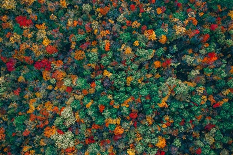 5c3d9ff613e78 aerial photography contest 2018 dronestagram 37 5c3c416769965  880 - 50 imagens de tirar o fôlego utilizando Drones