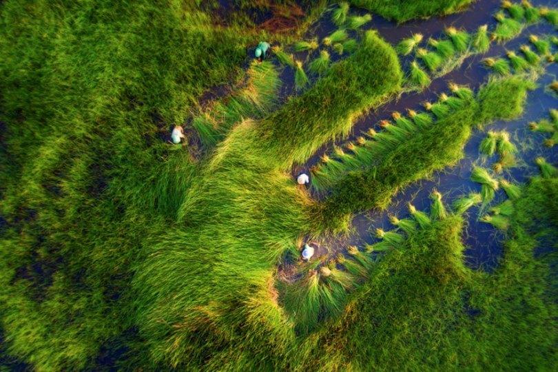 5c3d9ff7d228e aerial photography contest 2018 dronestagram 41 5c3c416e55e14  880 - 50 imagens de tirar o fôlego utilizando Drones
