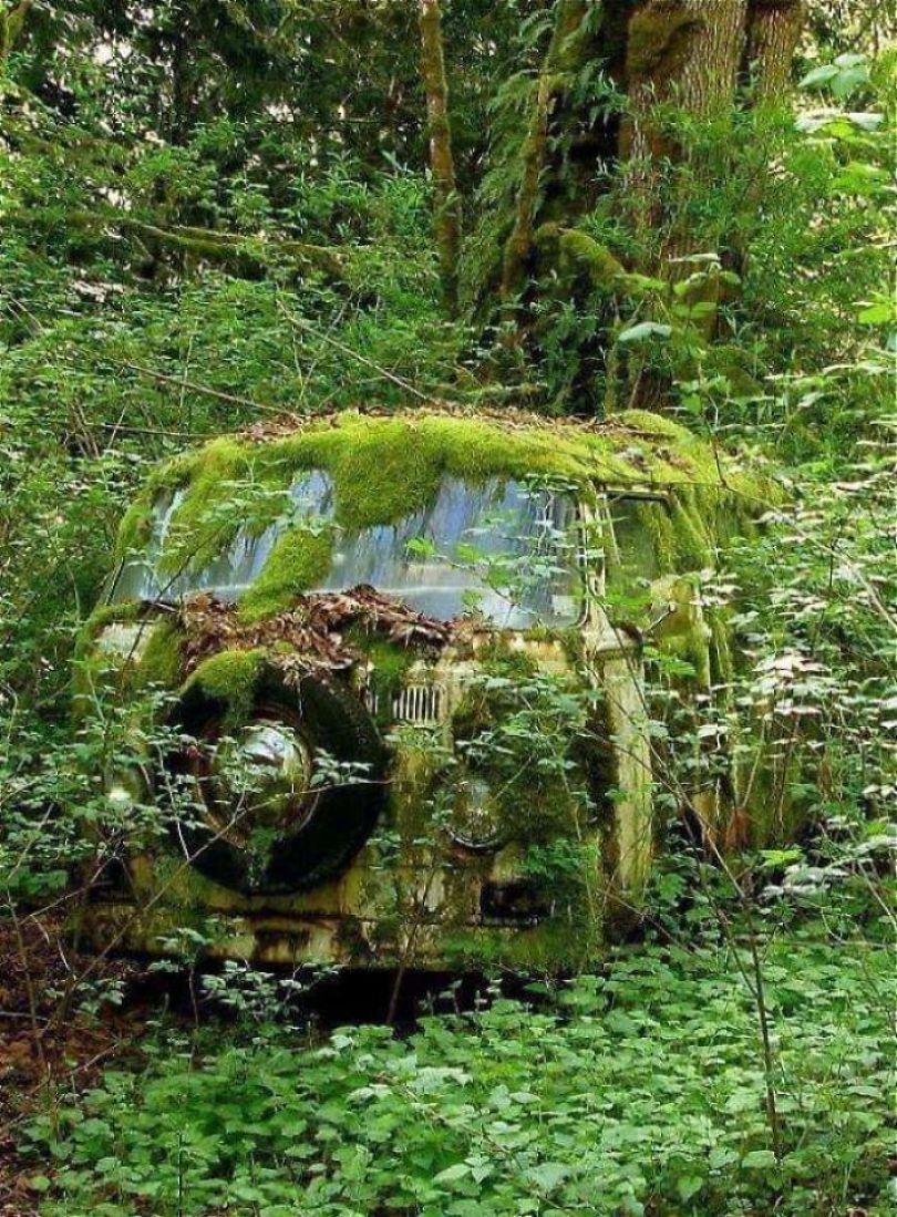 5d3020fbcc6fe 5d023d0ed756f 2ubemakyyfi21  700 - Poder da Natureza - Quando a paisagem já faz parte da natureza
