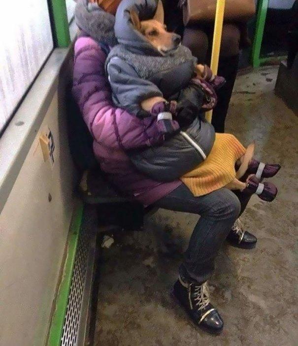 5dc3d4b930ecf humans of trolleybuses 320 5dc2872960a4d  700 - Conta do Instagram compartilha as coisas mais estranhas do transporte público