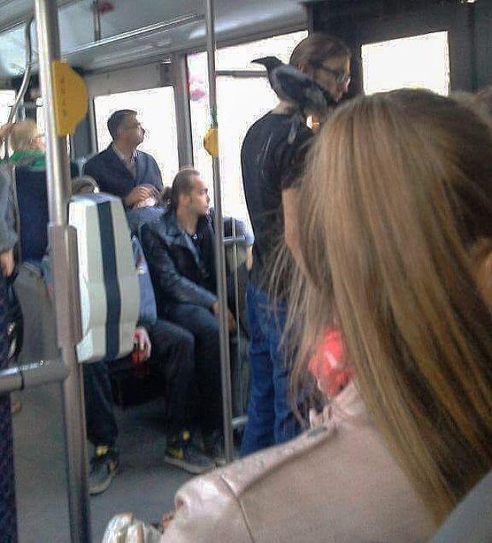 5dc3d4bd720a4 BJipuSrhtIj png  700 - Conta do Instagram compartilha as coisas mais estranhas do transporte público