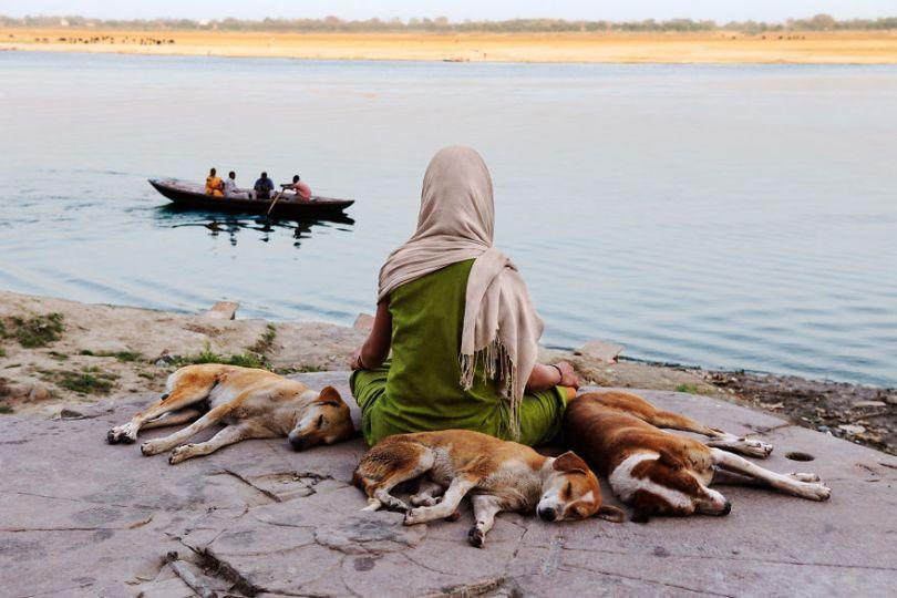 5dce5d22d6c62 x 5dc9d3ded8116  880 - 40 fotografias de Steve McCurry que exploram a relação entre humanos e animais