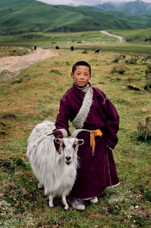 5dce5d2442b2a x 5dc9d4f4407ce  880 - 40 fotografias de Steve McCurry que exploram a relação entre humanos e animais