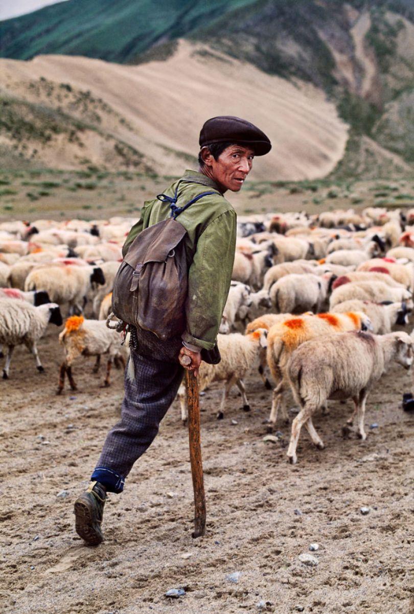 5dce5d269a012 x 5dc9d2dd406c0  880 - 40 fotografias de Steve McCurry que exploram a relação entre humanos e animais