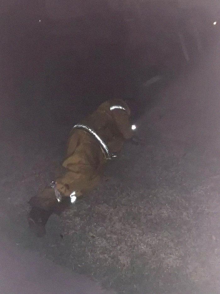 5e1443018de60 australia fires photos 12 5e12e5876232d  700 - Internet compatilha 50 fotos que revelam as queimadas na Austrália