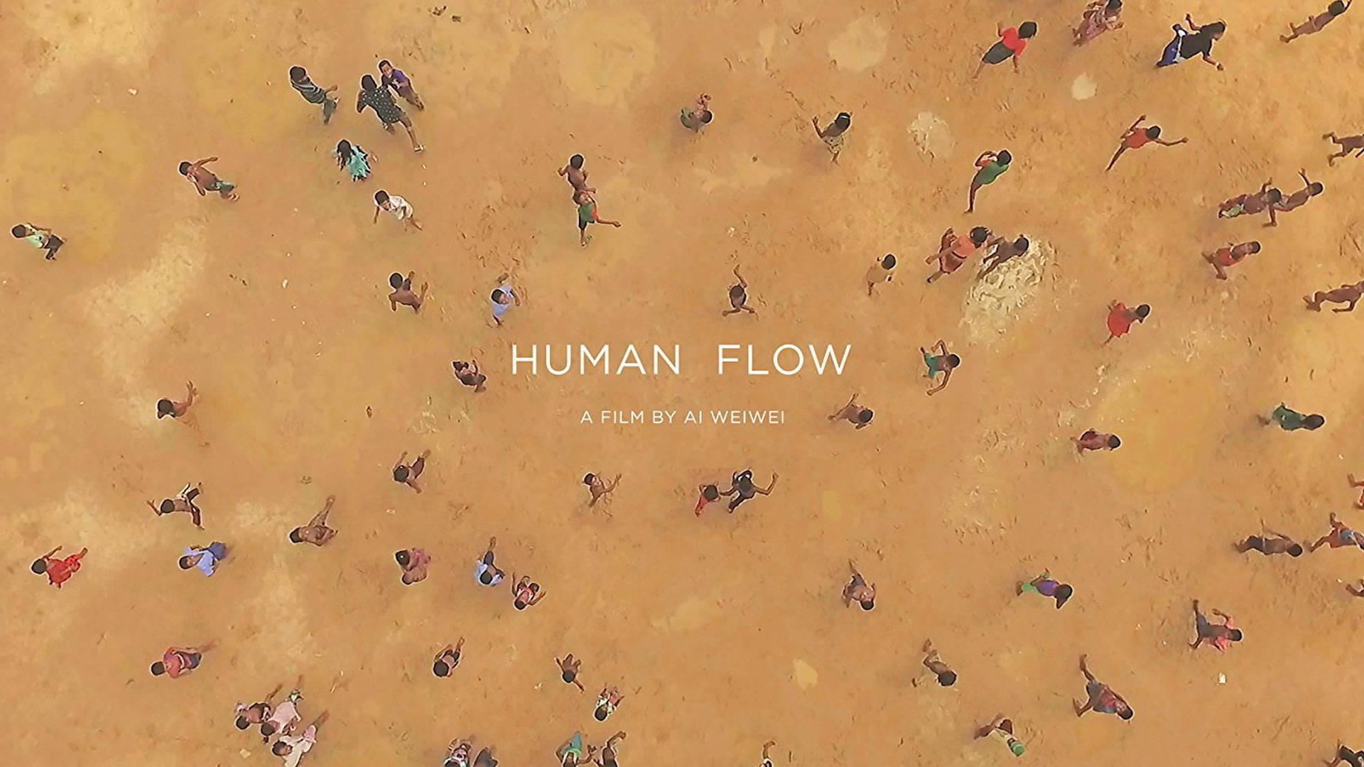 Human Flow World Renowned Artist Amp Activist Ai Weiwei