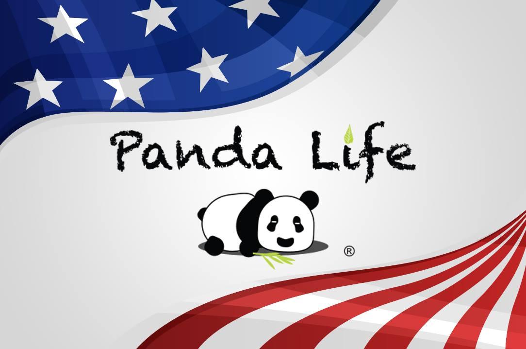 panda life pillow online